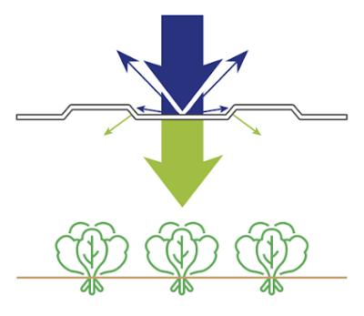 Монолитный поликарбонат для теплиц Standart