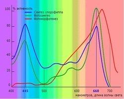 Влияние спектра света на рост растений